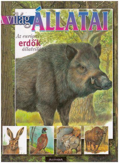 Az európai erdők állatvilága
