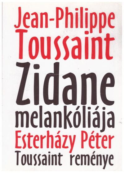 Zidane melankóliája, Toussaint reménye