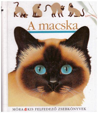 A macska